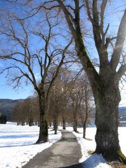 Winter Momente für Genuss im WellSpa-Portal