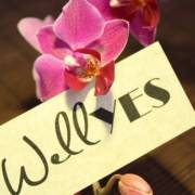 Wellness oder WellYes
