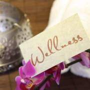 WellSpa-Portal Wellness