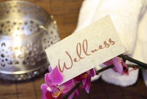 WellSpa-Portal Wellness