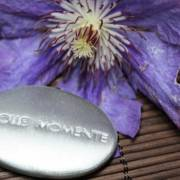 Tolle Wellness Moment