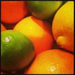 Frischer Duft von Orange, Limette und Zitrone