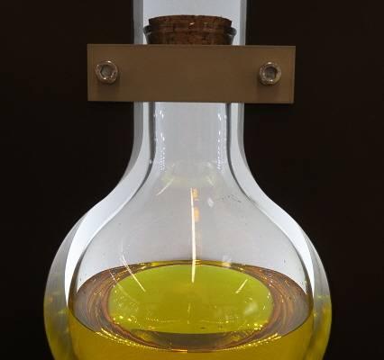 Traubenkern Öl zum Essen und die Schönheit
