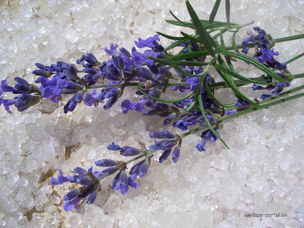 Salz Lavendel Wellness Beauty