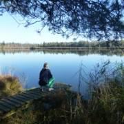 Faszinierend schön - Moorsee im Wurzacher Ried