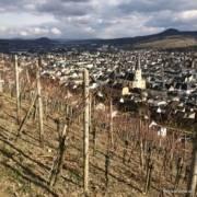 Genussreisetipps Ahrtal Bad Neuenahr