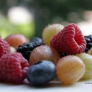 Antioxidantien Fit Food aus der Beere
