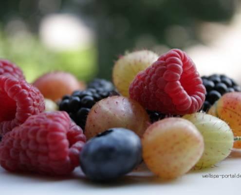 Antioxidantien Fit Food aus der Beere