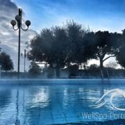 Wellness im WellSpa-Portal