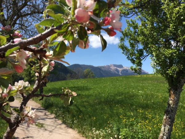 Reiseziele – die schönsten Sehnsuchtsorte im Frühling
