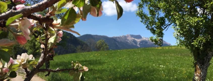 Südtirol Deutsch Nonsberg St. Felix Wasserfall