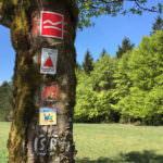 Genusswandern im Sauerland in NRW