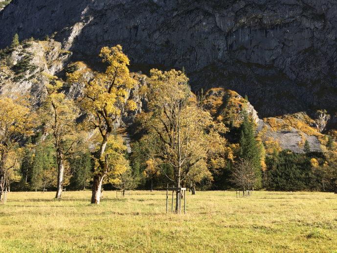 Wandern Großer Ahornboden Tirol Österreich Genuss