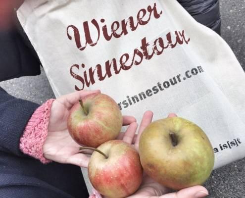 Wiener Sinnestour