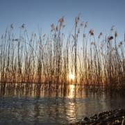 Perfekter Tag Chiemsee Sommerfrische Sundowner Bar Sonnenuntergang Chiemseestrand