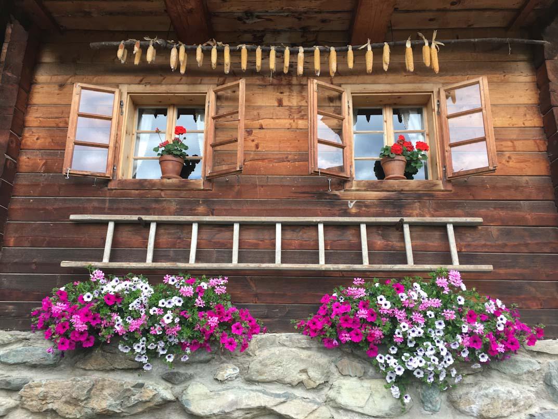 Wellnesshotel in den Bergen, Bayern, Österreich und Südtirol