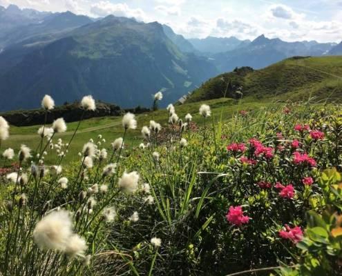 Urlaub Silvretta Montafon. Auszeit auf dem Berg Vorarlberg Österreich