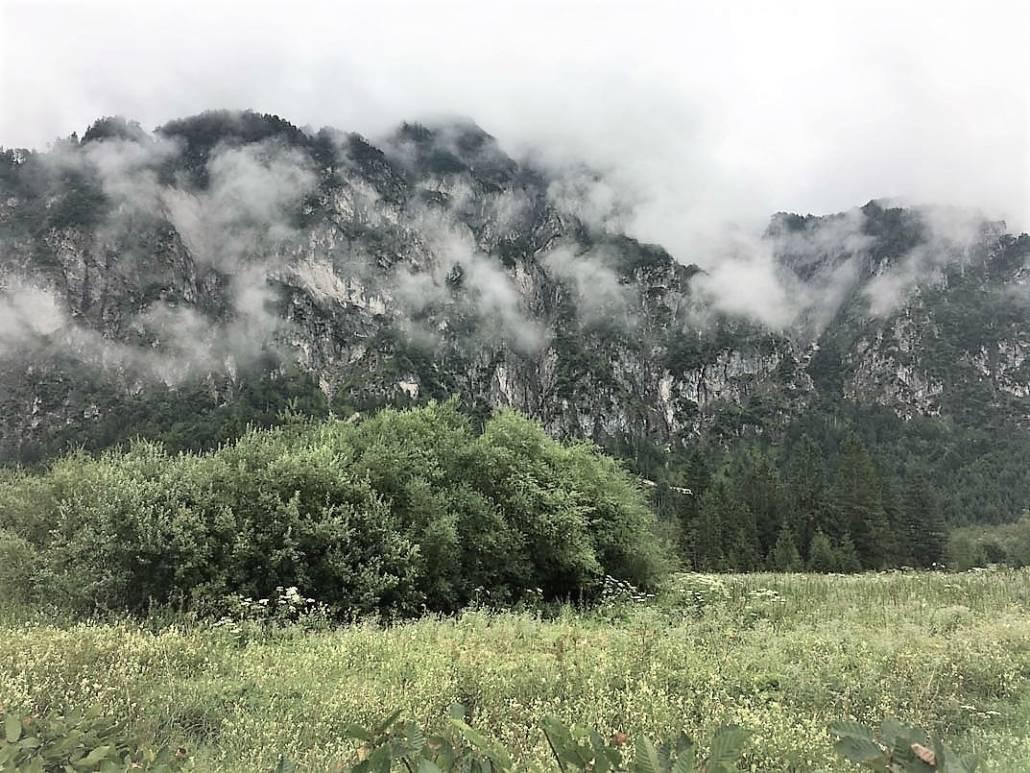 Waldness Wohlfühloase Wald. Waldbade im Almtal hoch über Grünau auf dem Kasberg. Almsee