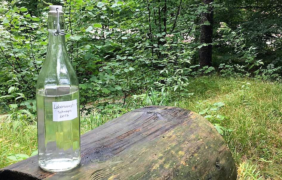 Waldness Wohlfühloase Wald Almtal Oberösterreich. Leberwurscht Schnaps in Sachen Kneipp