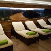Urlaub mit Wellness in Österreich gefällig? Das 4 Sterne Wellnesshotel Riverresort Donauschlinge bietet Entspannung und Genuss am Fluss.