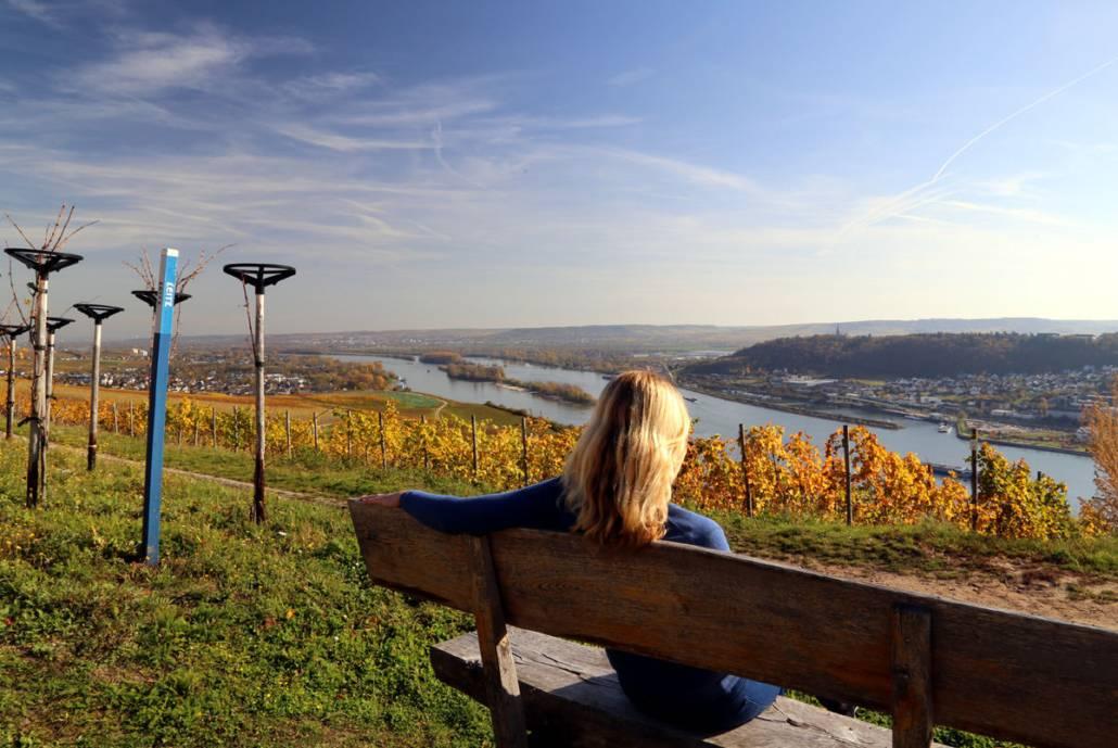 Fine Living Hotel Rheingau_Ausblick auf die Weinberge des Rheingaus und den Rhein
