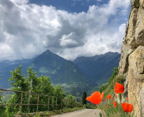 Genussreisetipps und Ausflugsziele für Südtirol. Meran, Wandern und Wellness, Brixen zum Wasser Licht Festival. Kurzurlaub und die perfekten 48h in Südtirol. #Südtirol #Wandern #Wellness #Kurzurlaub #Genussreisetipps