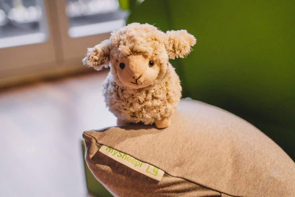 Ein Schlaf-Schaf hält Einzug in mein Bett