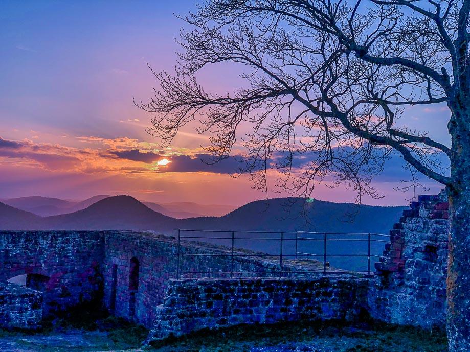 Die schönsten Wanderungen in der Pfalz - WellSpa-Portal